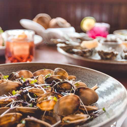 clams and oysters